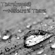 Teardrops@