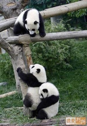 Help me up!